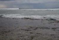 ombak pantai tanjung setia