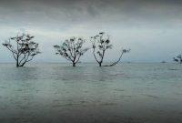 Obyek Wisata di Pantai Bahari Sebalang